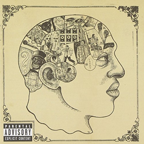 Roots Phrenology Explicit Version