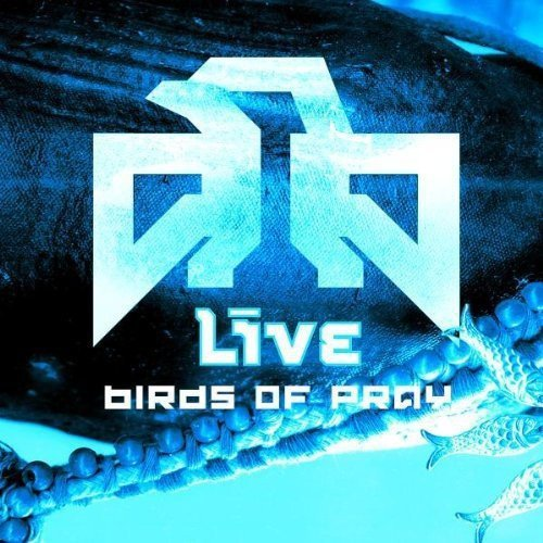 Live Birds Of Prey