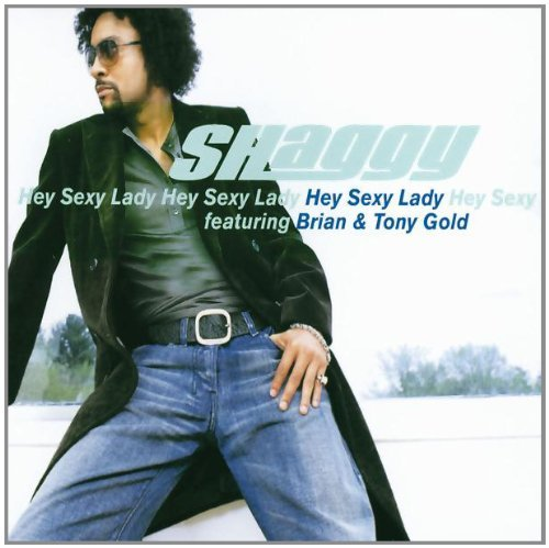 Shaggy Hey Sexy Lady