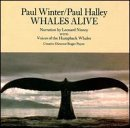 Winter Halley Whales Alive Nar By Leonard Nimoy