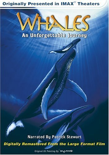 Whales Unforgettable Journey Whales Unforgettable Journey Clr Cc 5.1 Mult Dub Imax Nr