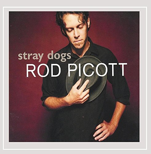 Rod Picott Stray Dogs
