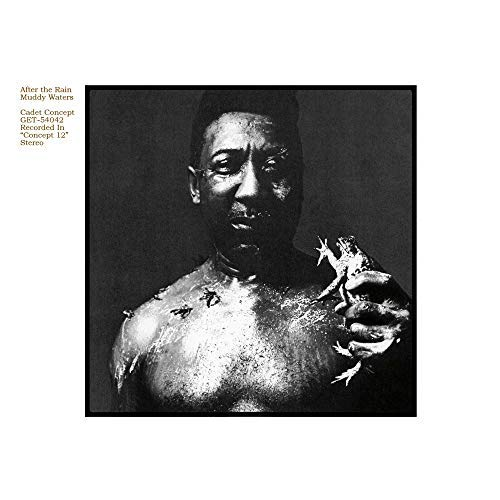 Muddy Waters After The Rain
