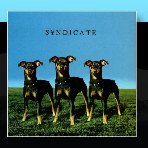 Syndicate Syndicate
