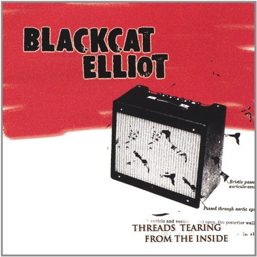 Blackcat Elliot Threads Tearing From The Insid