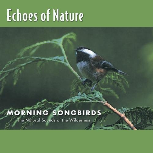 Echoes Of Nature Morning Songbirds