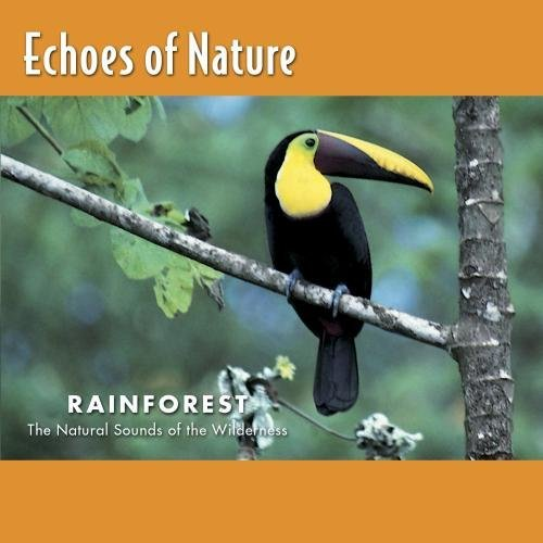 Echoes Of Nature Rainforest