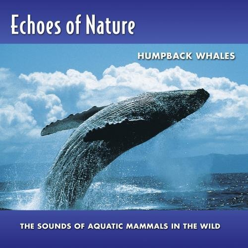 Echoes Of Nature Humpback Whales