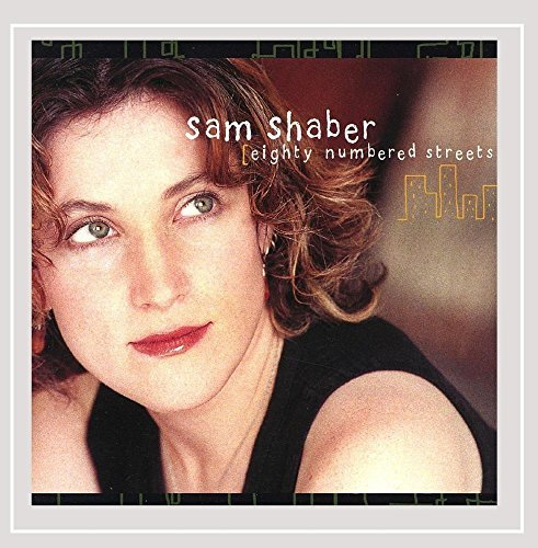 Sam Shaber Eighty Numbered Streets