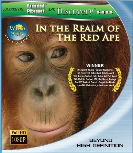 Wild Asia 1 In The Realm Of Th Wild Asia 1 In The Realm Of Th Ws Blu Ray Nr