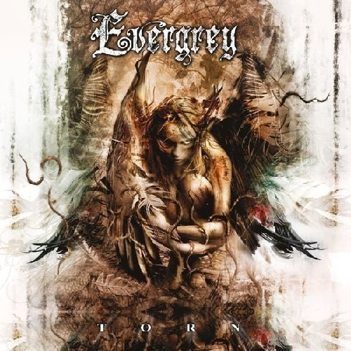 Evergrey Torn