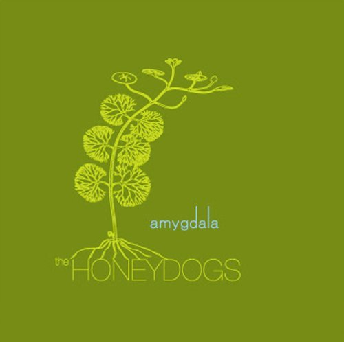 Honeydogs Amygdala