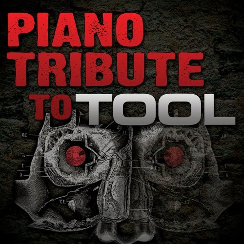 Tool Tribute Piano Tribute To Tool T T Tool