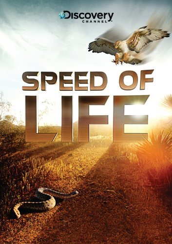 Speed Of Life Speed Of Life Nr