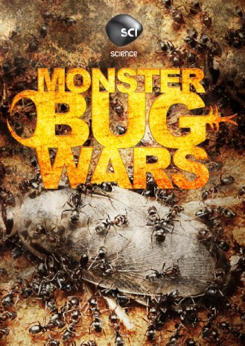 Monster Bug Wars Monster Bug Wars Nr
