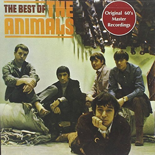 Animals Best Of Animals