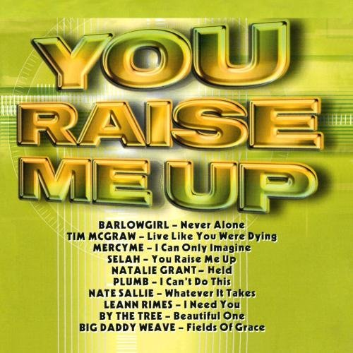 You Raise Me Up You Raise Me Up CD R