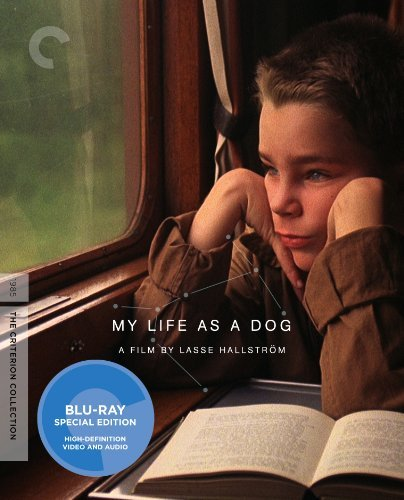 My Life As A Dog My Life As A Dog Pg13 Criterion
