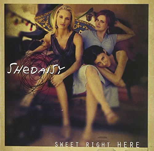 Shedaisy Sweet Right Here