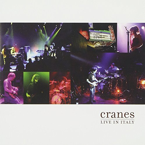 Cranes Live In Italy