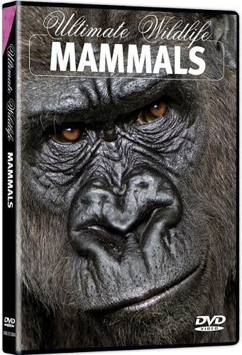 Mammals Ultimate Wildlife Ws Nr