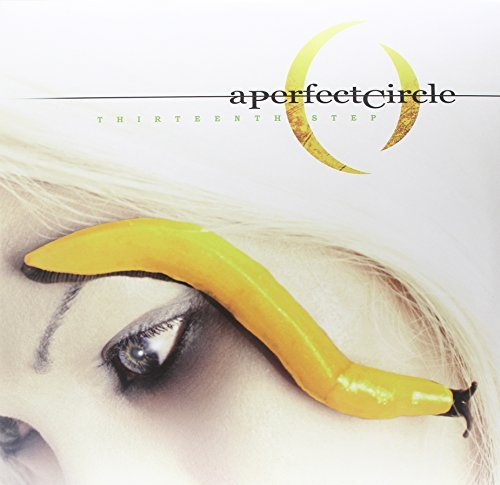 Perfect Circle Thirteenth Step 2 Lp