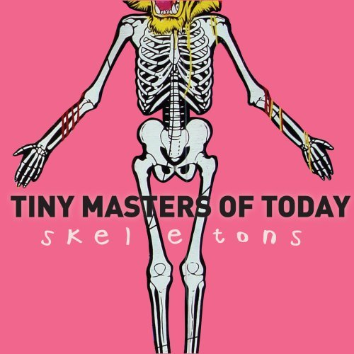 Tiny Masters Of Today Skeletons