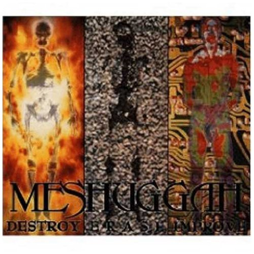 Meshuggah Destroy Erase Improve