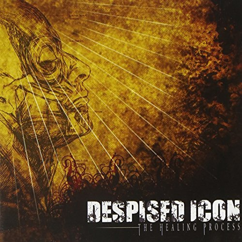 Despised Icon Healing Process
