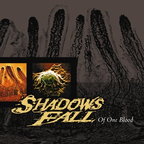 Shadows Fall Of One Blood
