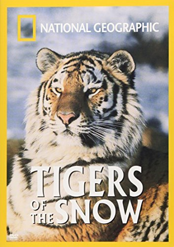 Tigers Of The Snow National Geographic Nr