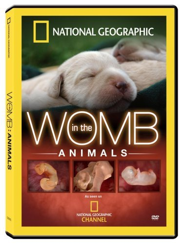 In The Womb Animals National Geographic Nr