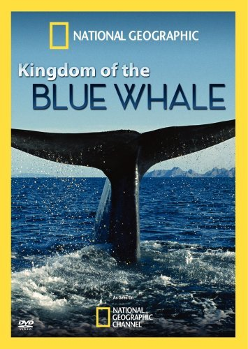 Kingdom Of The Blue Whale National Geographic Nr