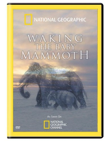 Waking The Baby Mammoth National Geographic Nr