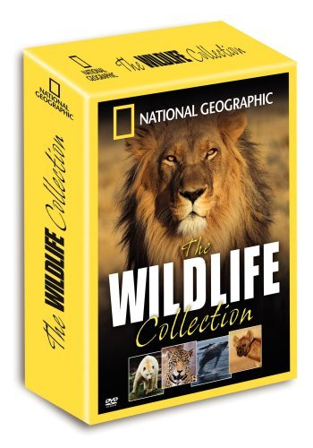 Wildlife Collection National Geographic Nr 4 DVD