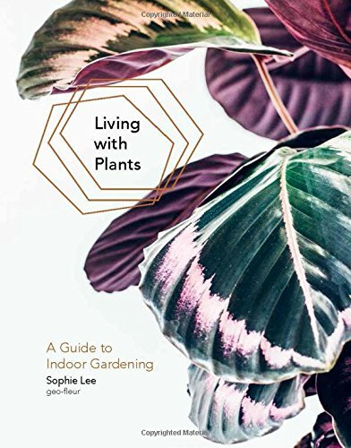 Sophie Lee Living With Plants A Guide To Indoor Gardening