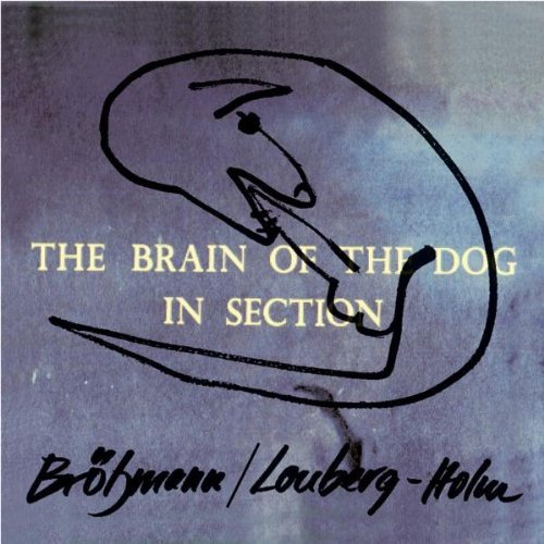Brotzmann Lonberg Holm Brain Of The Dog In Section