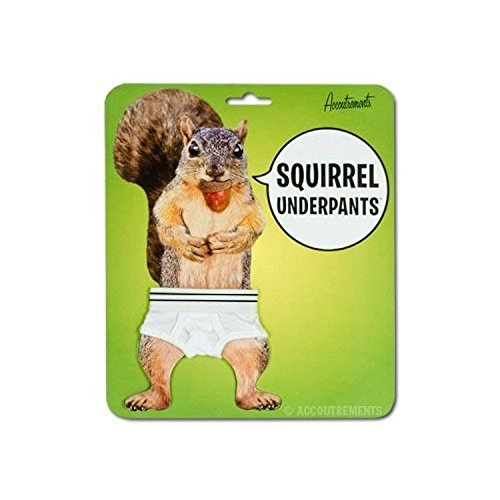 Novelty Squirrel Underpants