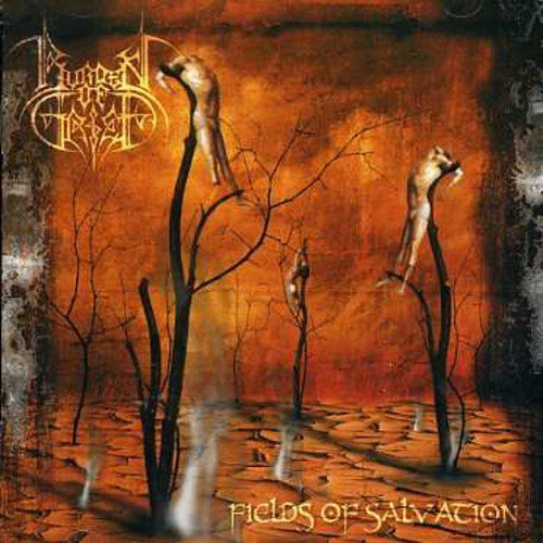 Burden Of Grief Fields Of Salvation