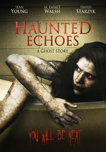 Haunted Echoes A Ghost Story Young Walsh Landau Bain Ws R