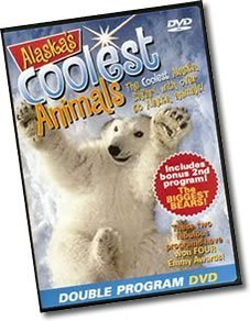 Daniel Zatz Alaska's Coolest Animals And The Biggest Bears