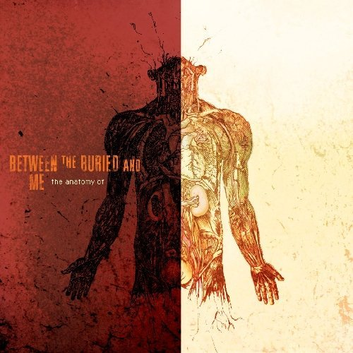 Between The Buried And Me Anatomy Of