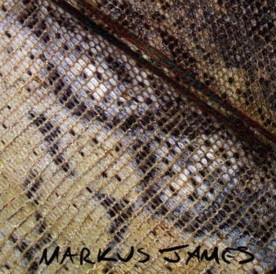 Markus James Snakeskin Violin