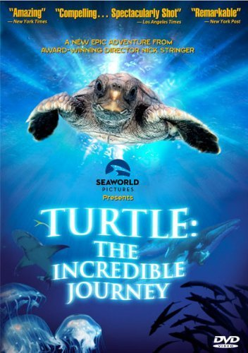 Turtle The Incredible Journey Turtle The Incredible Journey G