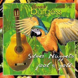 Burgess David Silver Nuggets & Fool's Gold Burges (gtr)