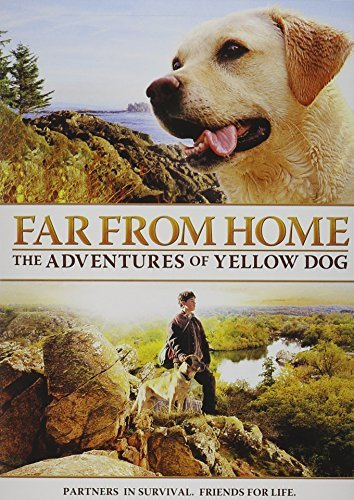 Far From Home Adventures Of Ye Rogers Davison Bradford Bower Ws Pg
