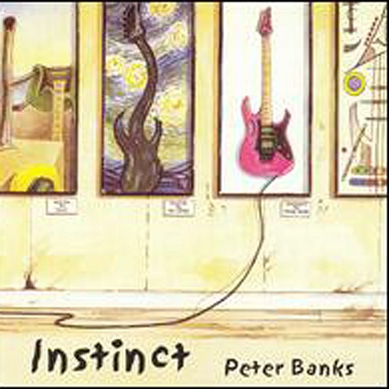Peter Banks Instinct Import Gbr