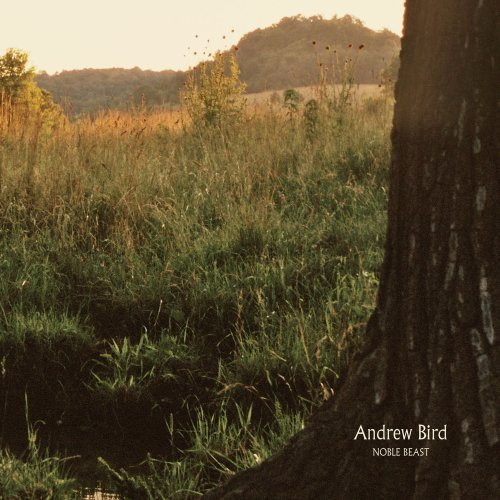 Andrew Bird Noble Beast 2 Lp Set