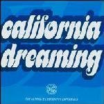 California Dreaming Ultimate Cyberhippy Experience