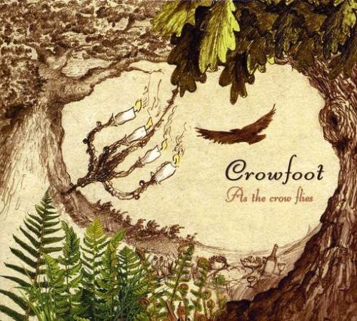 Crowfoot As The Crow Flies